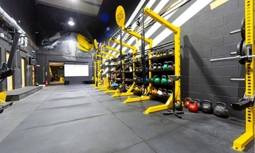 SOS Athletic Excellence Facility Functional Fitness Rig